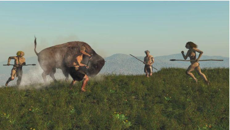 Lov na velike živali